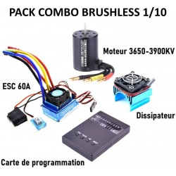 ACME Warrior Buggy RC Thermique 4 Roues Motrices Echelle 1/8